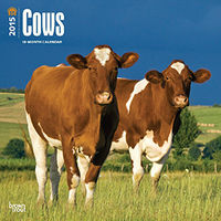 Browntrout Cows 2015