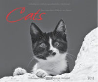 Cats 2013
