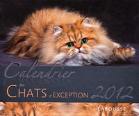Des chats d'exception