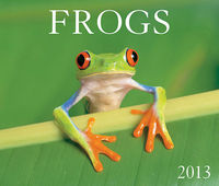 Frogs 2013