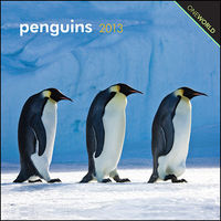 penguins 2013 one world