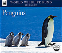 WWF Penguins 2014