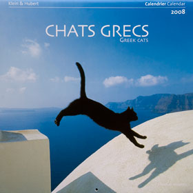 http://www.klein-hubert-photo.com/medias/images/chats_grece_desastre_08.jpg